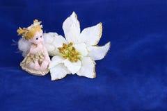 De engel van poinsettia op blauw Stock Foto's