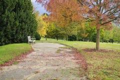 De Engelse herfst parkland Stock Afbeeldingen