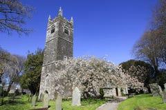 De Engelse Kerk van het Land en de Lentebloesem Cornwall Stock Afbeelding