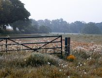 De Engelse poort van het ochtendplatteland royalty-vrije stock afbeeldingen