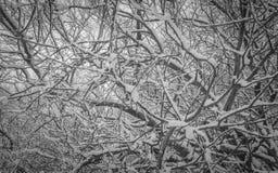 De Engelse Scène van het de Winterlandschap Stock Foto's