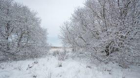 De Engelse Scène van het de Winterlandschap royalty-vrije stock afbeelding