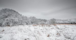 De Engelse Scène van het de Winterlandschap stock afbeeldingen