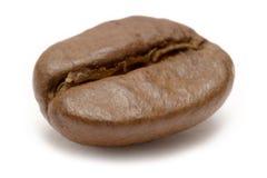De enige Boon van de Koffie Stock Foto's