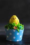 De enige cake van de kippenkop Royalty-vrije Stock Fotografie