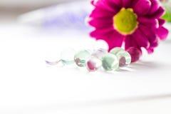 De enige roze chrysanten sluiten omhoog macro Stock Afbeelding