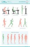 De ergonomie en de verbeteringen van de lichaamshouding vector illustratie