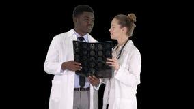 De ernstige aardige vrouw arts en afro Amerikaanse arts r?ntgenstraal van studiehersenen, Alpha Channel stock video