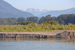 De Erosie en de Droogte van de Riverbankgrond Stock Afbeeldingen