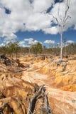 De erosie van de grond door overgrazing Stock Afbeelding