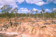 De erosie van de grond door overgrazing Royalty-vrije Stock Afbeeldingen