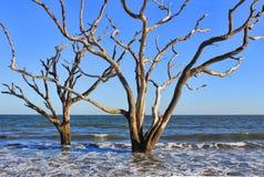 De Erosie van het strand Royalty-vrije Stock Foto