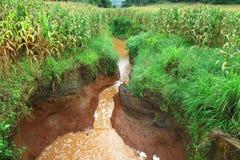 De erosie van het water Stock Afbeelding