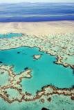 De Ertsader van het hart, Groot Barrièrerif, Australië Stock Foto