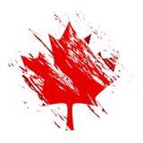 De esdoornblad van Canada Royalty-vrije Stock Afbeeldingen
