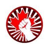 De esdoornblad van Canada Stock Fotografie