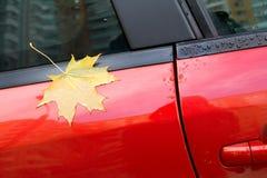 De esdoornblad van de herfst op de auto Stock Fotografie