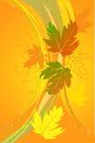 De esdoornbladeren van de herfst Stock Illustratie