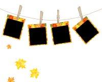 De esdoornfoto van de herfst Royalty-vrije Stock Afbeeldingen