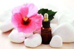 De essentiële olie van de hibiscus royalty-vrije stock foto