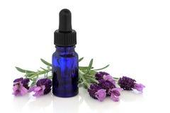 De Essentie van de Bloem van het Kruid van de lavendel stock foto