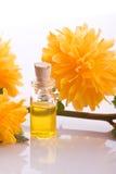 De essentie van de boterbloemenbloem Royalty-vrije Stock Foto