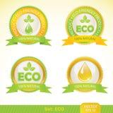 De etiketten van de ecologie Royalty-vrije Stock Afbeelding