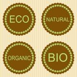 De etiketten van Eco met retro uitstekend ontwerp Stock Afbeeldingen