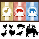 De etiketten van het voedsel Stock Afbeelding