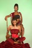 De etnische het vrouwenleider en wijfje bewaken holdingsspear Royalty-vrije Stock Fotografie
