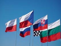 De EU-vlaggen op vlaggestokken stock footage
