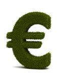 De Euro van het gras Stock Afbeelding