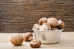 De Europese champignonsoep van het voedselconcept met champignonopstelling met bruine achtergrond Champignonpaddestoel of Knooppa Royalty-vrije Stock Afbeeldingen