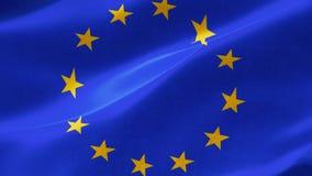 """De Europese Vlag is een officieel symbool van afzonderlijke organisations†twee de"""" Raad van Europa CoE en de Europese Unie EU vector illustratie"""
