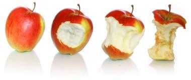 De evolutie van de appel Royalty-vrije Stock Foto