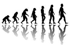 De evolutie van de silhouetmens Royalty-vrije Stock Fotografie