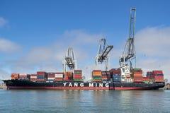 De EVOLUTIE van het containerschip YM stock foto's