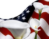 De exemplaarruimte met de V.S. markeert en calla lilyumbloemen, voor grafisch concept stock foto's