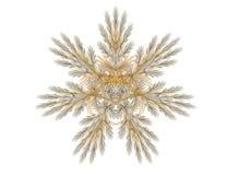 De exotische samenvatting van het Hart royalty-vrije illustratie