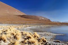 De expeditie van Zuid-Amerika, Bolivië Stock Fotografie