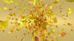De exploderende herfst doorbladert achtergrond stock videobeelden