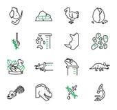 De-extinção, ou grupo da coleção dos ícones do vetor da biologia da ressurreição ilustração royalty free