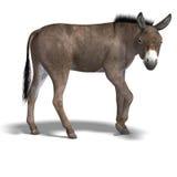 De ezel geeft terug royalty-vrije illustratie