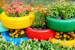 De färgrika blommorna och gummihjulkrukorna Arkivfoto