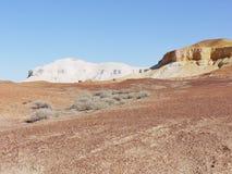De färgrika brytningarna i vildmarken Australien Arkivbild