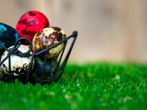De färgrika easter äggen är i korgen Förlagt på grönt gräs Ha en gullig kanin i baksidan Baksidan är en brun wood ram Arkivfoton