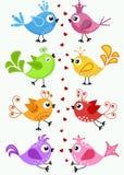 De färgrika fåglarna i ett läge Royaltyfri Bild