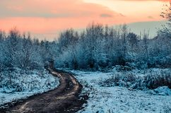 De fabelachtige Russische winter 777 royalty-vrije stock fotografie