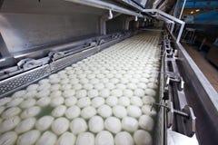 De Fabriek van Provola Ricotta van de mozarella Royalty-vrije Stock Fotografie