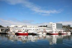 De fabriek van vissen Stock Afbeeldingen